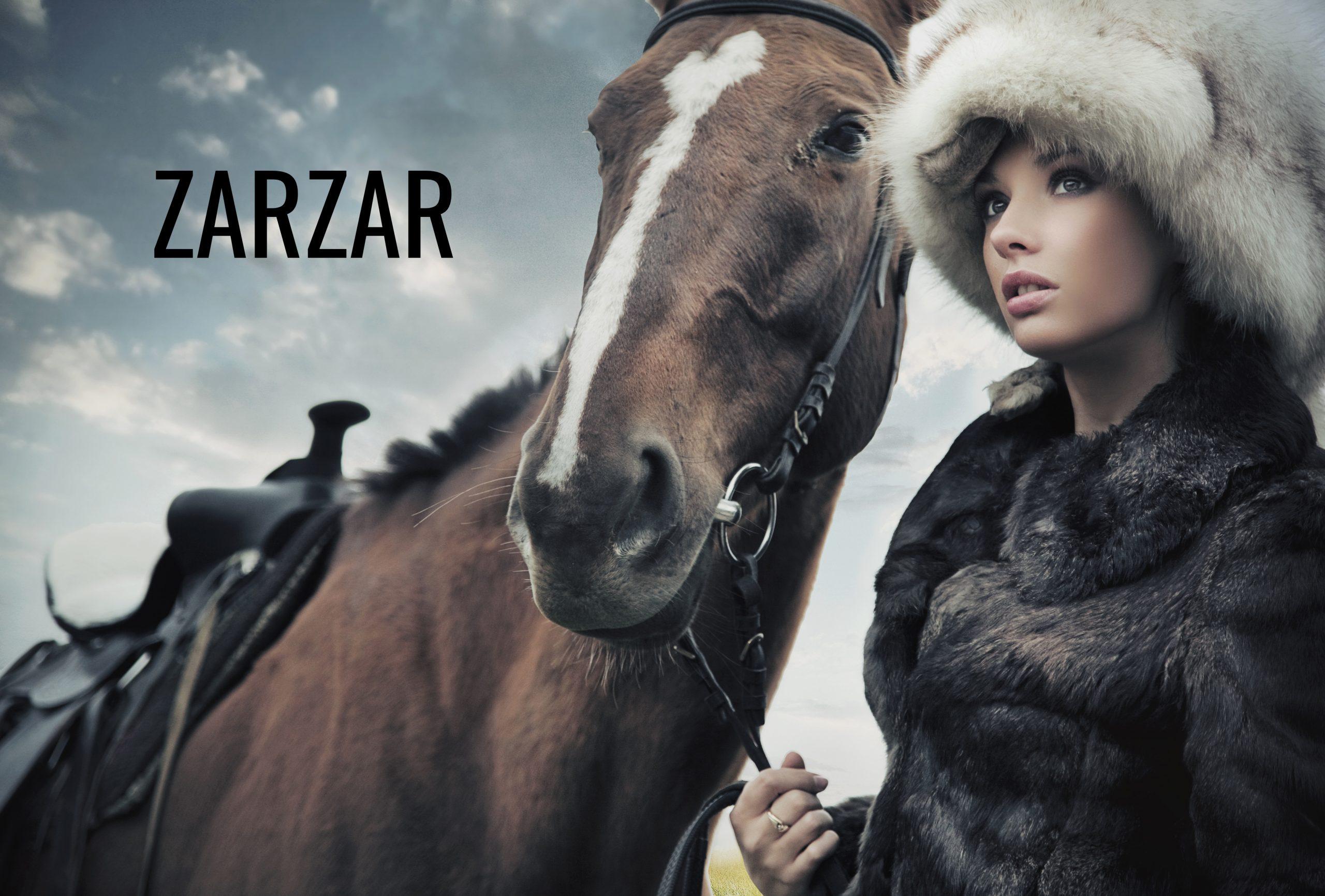 ZARZAR FASHION Winter Coats For Women.